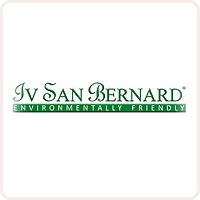 Iv San Bernard