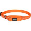 Red Dingo оранжевый Hypno 25мм*41-62см